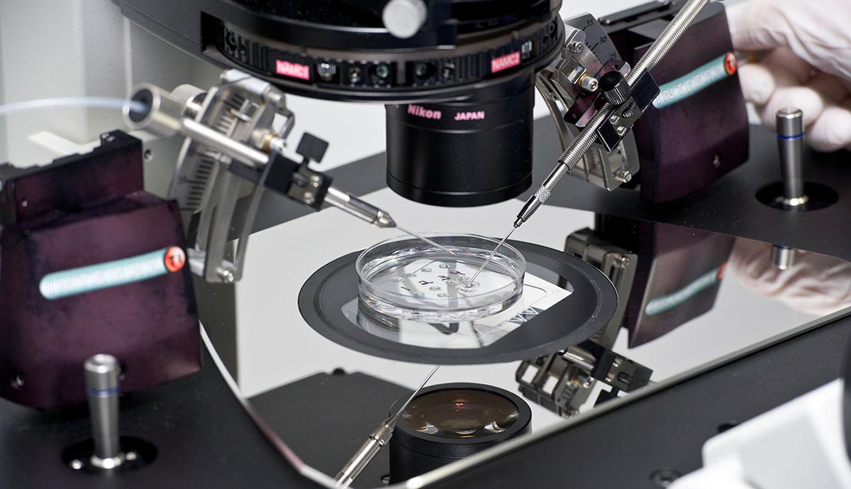 ovumia fertinova icsi laboratory